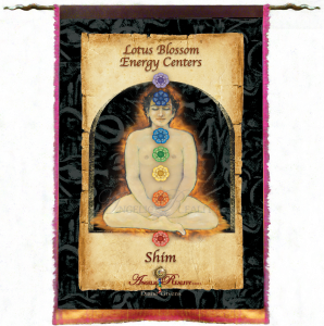 Silk_MysticTapestry_Illuminations Tap Shim FINAL