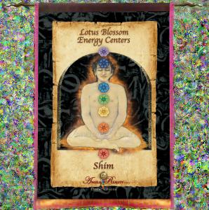 Silk_MysticTapestry_Illuminations Tap Shim FINAL